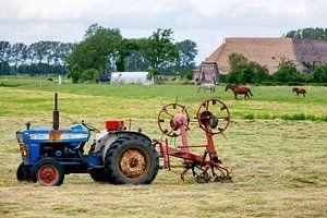 Oude blauwe tractor in een weiland