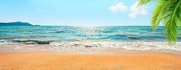 Ile des mers du sud sur Manjik Pictures