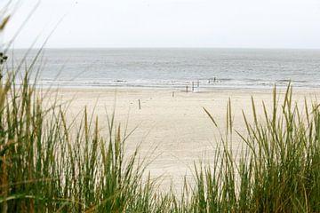 Dunes, plage et mer sur l'île néerlandaise des Wadden, Ameland, près de Hollum. sur Ans van Heck