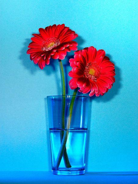 Rode bloemen op blauw van Ruurd Dankloff
