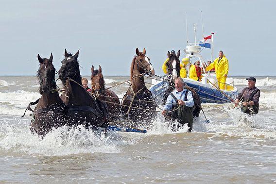 amelandse reddingsboot met paarden  van Dirk van Egmond