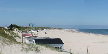 Strand op Texel. von Frank Van der Werff