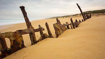 Trinculo Shipwreck van Chris van Kan