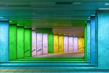 Entrée de nuit de l'Institut d'architecture des Pays-Bas (NAI) sur Gea Gaetani d'Aragona