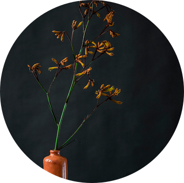 Foto print van oranje bloem in vaas tegen donkere achtergrond van Jenneke Boeijink