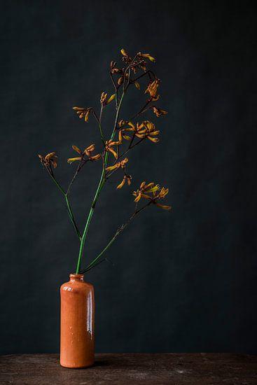 Foto print van oranje bloem in vaas tegen donkere achtergrond