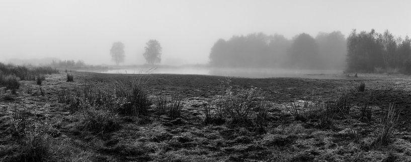 Misty Rondven van William Mevissen