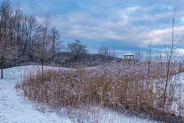 Prille winterochtend van