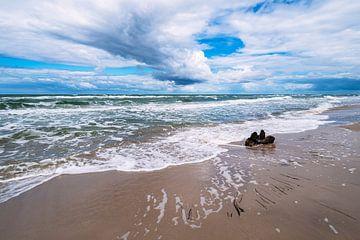 Der Weststrand auf dem Fischland-Darß von Rico Ködder