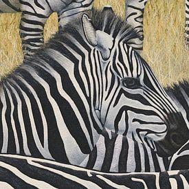 Zebra's van Russell Hinckley