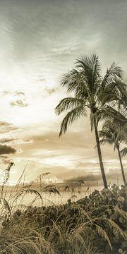 BONITA BEACH Droomachtige zonsondergang | Vintage Panorama van Melanie Viola
