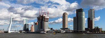 Manhattan aan de Maas van Paul Kampman