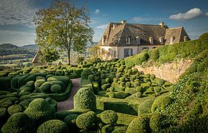 De tuinen van Marqueyssac van Frans Scherpenisse