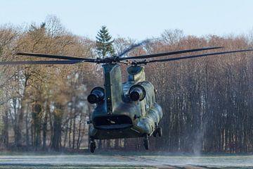 Chinook helikopter landt van