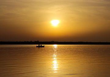 Sonnenuntergang Biesbosch von Milou Hinssen
