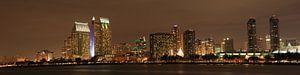 Skyline San Diego van