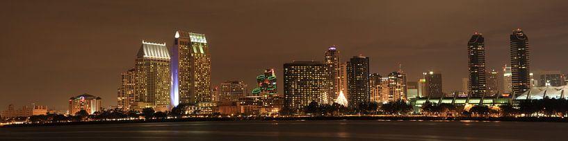 Skyline San Diego van Leo Roest