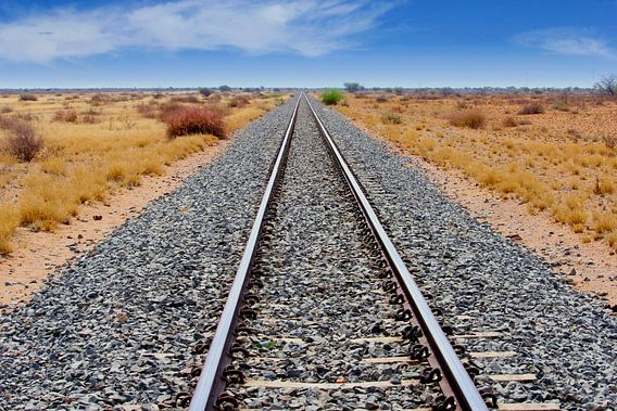 Spoorlijn door Afrikaanse Savanne