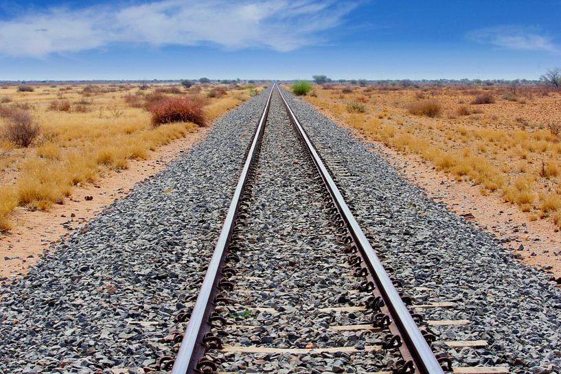 Spoorlijn door Afrikaanse Savanne van Inge Hogenbijl