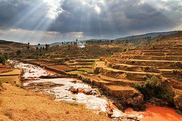 Terrassen in Madagaskar  van Dennis van de Water