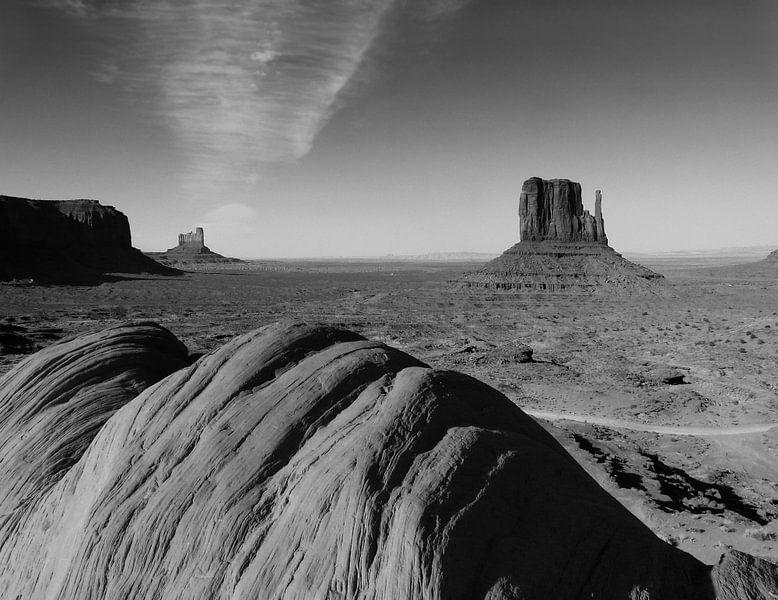 Monument Valley zwart wit van bird bee flower and tree