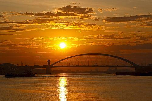 Zonsopkomst Van Brienoordbrug te Rotterdam