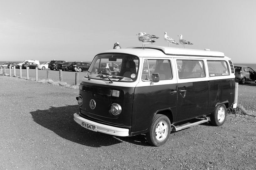 Volkswagen van with seagulls in the South of England sur Rob van Dam