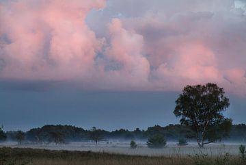 Sonnenuntergang auf der Strabrecht Heide von Hetwie van der Putten