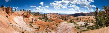 Bryce Canyon Panorama von Jeffrey Van Zandbeek