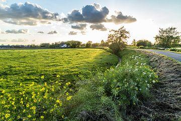Typische holländische Polderlandschaft von Dennis Kuzee