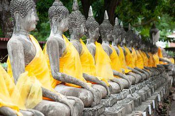 Buddha's in Ayuthaya van Sebastiaan Hamming
