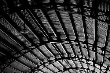 Stationsdach von Bart Rondeel