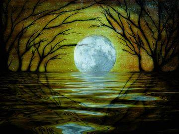 Magische maan van Christine Nöhmeier