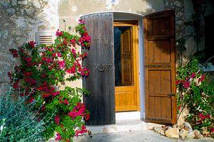 Schilderachtige voordeur in Mallorca omgeven door rode bloemen van Hans-Heinrich Runge