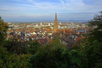 Herfst ochtend in Freiburg van Patrick Lohmüller