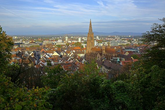 Herbstmorgen in Freiburg