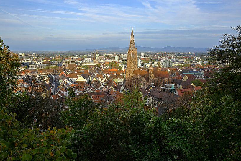 Herbstmorgen in Freiburg von Patrick Lohmüller