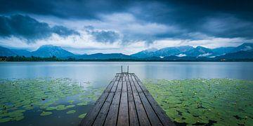 Sommerregen im Allgäu