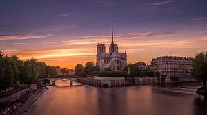 De Notre Dame in Parijs bij zonsondergang