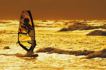 Gouden Surfer van Stephan Zaun