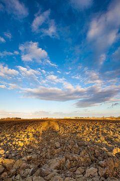 Weidse blik op het Groninger land von Ron Buist