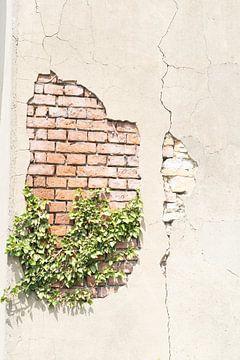 Gebroken muur von Diana Kors