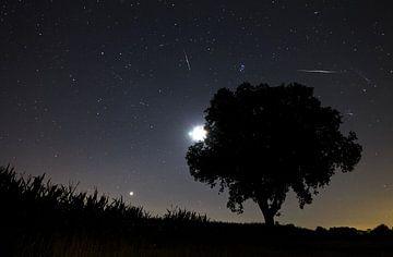 Perseiden meteorieten storm van Dennis van de Water