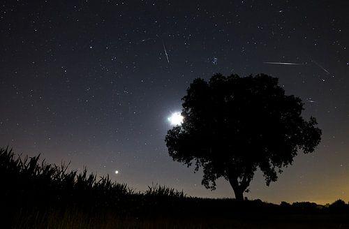 Perseiden meteorieten storm