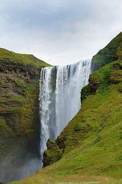 IJsland, Skogafoss waterval van Discover Dutch Nature