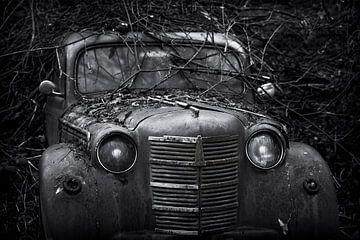 Verlassenes altes autowrack bedeckt mit Zweigen von Ger Beekes
