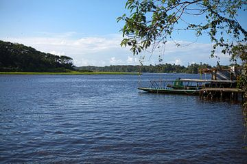 Parque Nacional Tortuguero - Costa Rica van t.ART