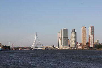 Rotterdam vanaf het water van Tamara & Mariëlle van #Scherpzinniger
