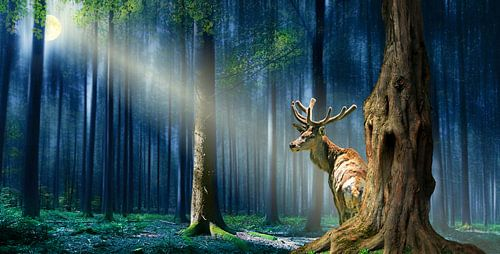 De herten in de mystieke bossen