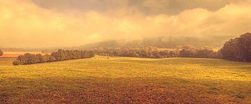 Mistig uitzicht op het Groote Bos bij Heijenrath in Zuid-Limburg van